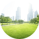 Lawn_with_City_Scape_Backdrop