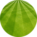 Green_Lawn_Recently_Mowed