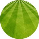grass-round-testimonial